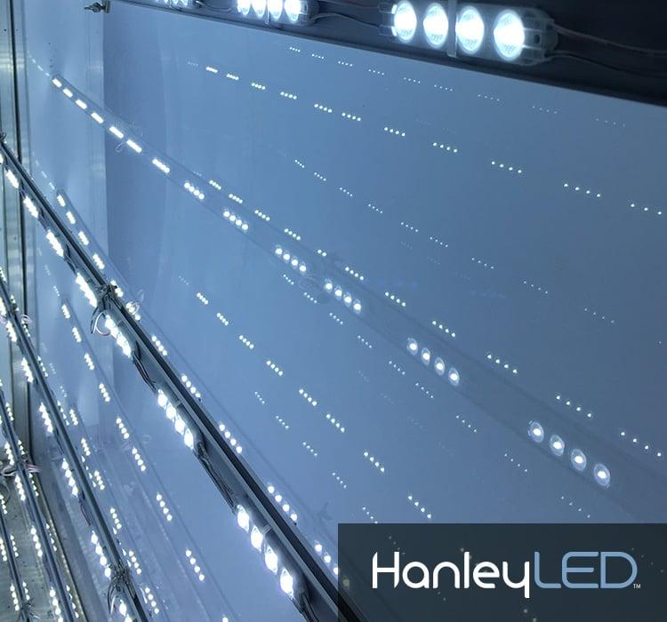 Hanley_Large1